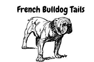 French Bulldog Tails