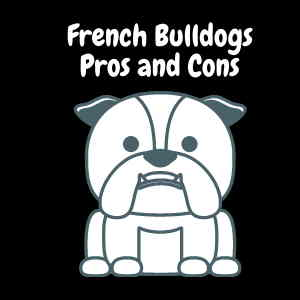 French Bulldogs Pros and Cons
